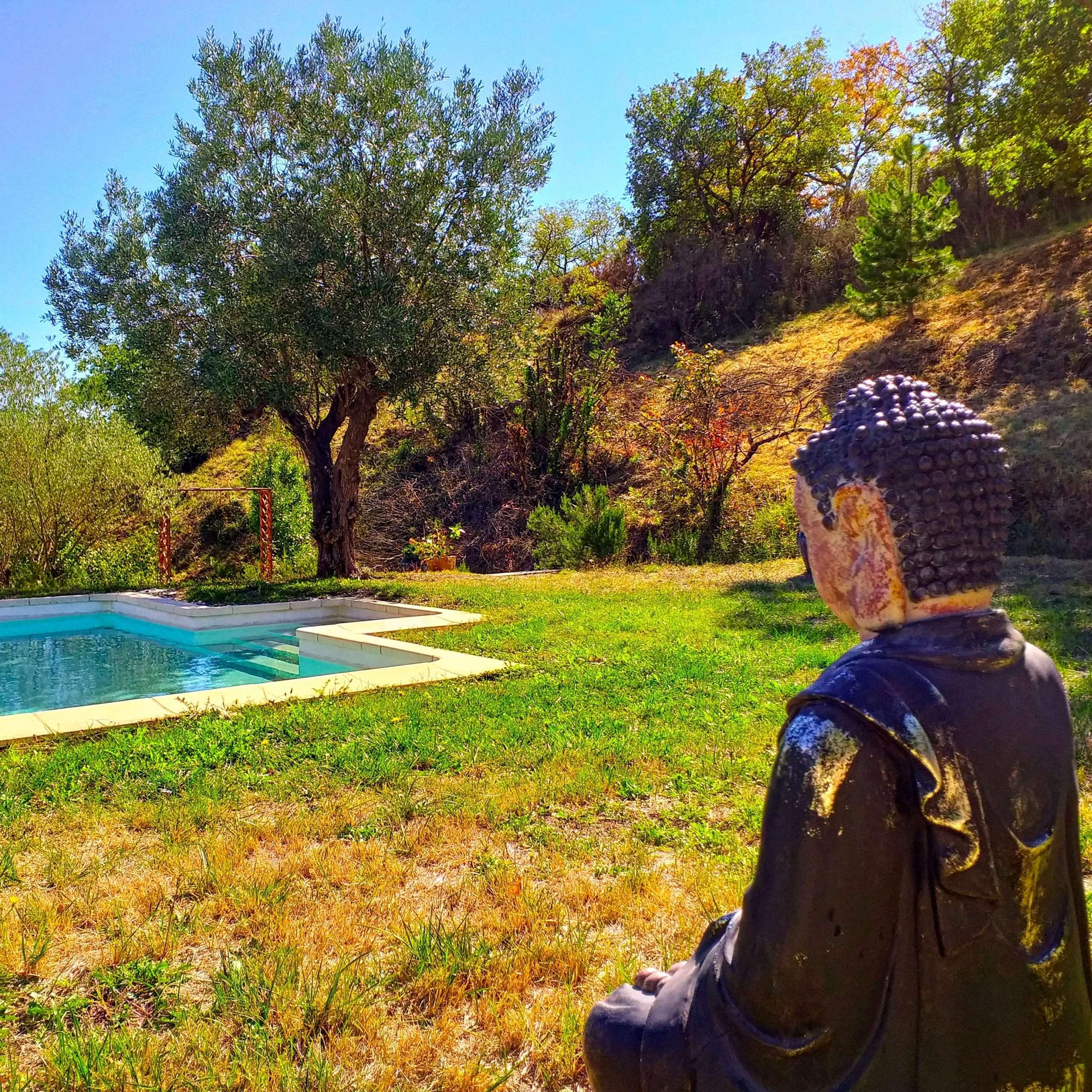 La Source Ardèche - Bouddha garde la piscine