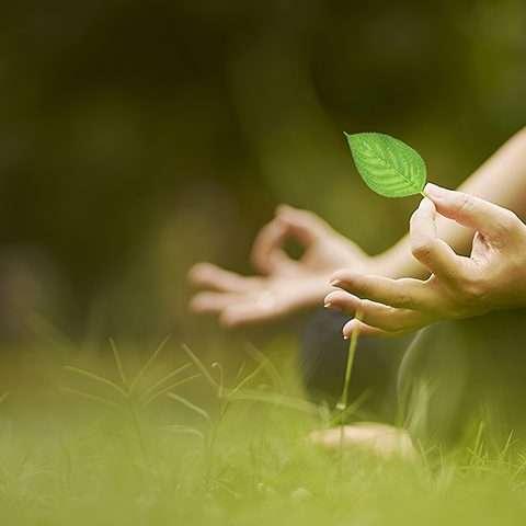 Retraite de méditation silencieuse à La Source Chambres Dhôtes en Ardéche